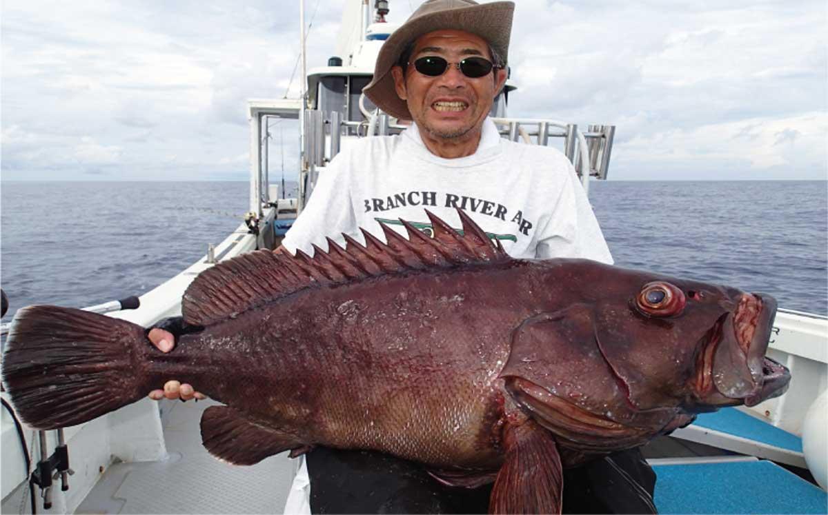 アーラミーバイ:沖縄釣り情報